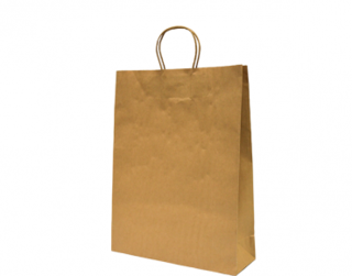 Paper Carry Bag with Twisted Paper Handle, Medium, Brown - Castaway