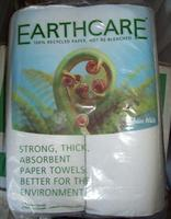 Paper Towel Roll (Kitchen Towel) - Earthcare'
